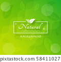 Green natural abstract background 58411027
