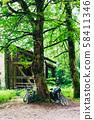 독일의 숲 자전거 58411346