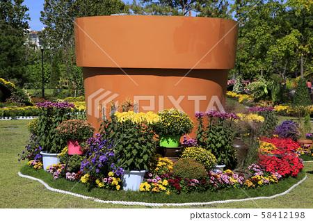 국화꽃축제 58412198