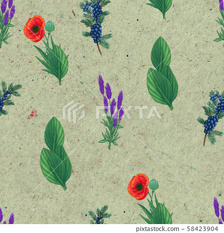 Hand drawn medicinal plant seamless pattern. Healing herbs drawing on craft paper. 58423904