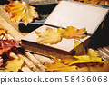 Books and autumn leaves 58436068