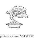 Bonsai tree in pot. Vintage black vector engraving 58438557