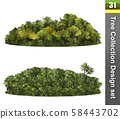 Trees correction design set. Forest isolated. 58443702