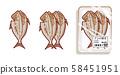 Opening tray of horse mackerel 58451951