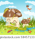 Fairytale landscape with funny insects 58457133