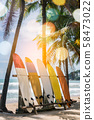 Many surfboards beside coconut trees at summer 58473022