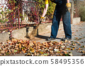Man brooming the street to collect fallen leaves 58495356