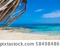 Beach and palm trees, sunny day Cyprus 58498486