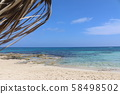 Beach and palm trees, sunny day Cyprus 58498502