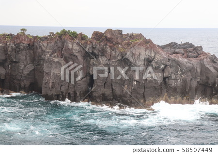 Shiogasaki coast 58507449