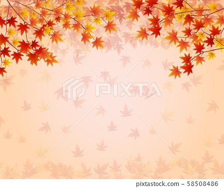 色的葉子背景 58508486