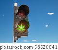Cannabis and marijuana legalization concept.  58520041