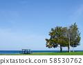 Lake Ontario 58530762