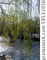 Upstate New York Salmon River 58531036