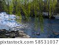 Upstate New York Salmon River 58531037