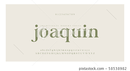 Elegant alphabet letters serif font and number. 58538982