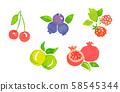 과일 여러가지 58545344