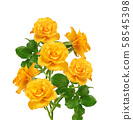 beautiful bouquet of blooming yellow roses on 58545398