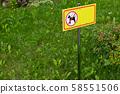 Yellow sign of animal walk prohibition on grass 58551506