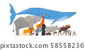 Wild animal cartoon collection isolated background 58558236