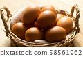 雞蛋 58561962