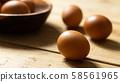 雞蛋 58561965