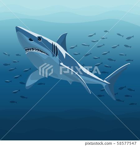 Vector Illustration Of White Shark 58577547