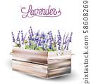 Lavender card vector watercolor 58608269