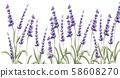 Lavender card vector watercolor 58608270