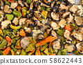 dried aggplants and pepper 58622443