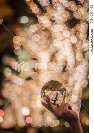 Jade Bouquet Illumination 58629443