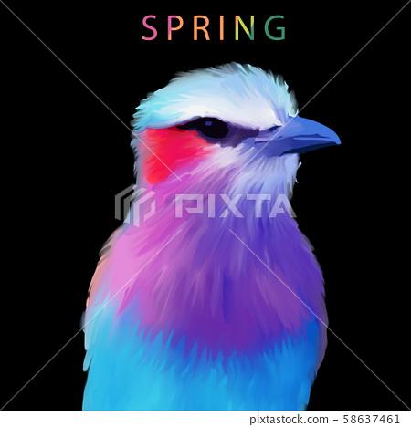 五顏六色的水彩手繪翠鳥小鳥 58637461