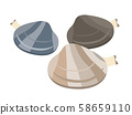 Illustration of clams 58659110