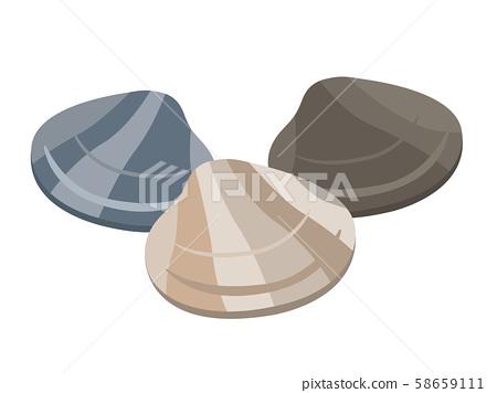 Illustration of clams 58659111