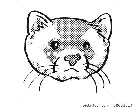 black-footed ferret Endangered Wildlife Cartoon 58663314