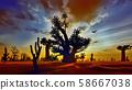 Awesome baobabs in African savannah 3d rendering 58667038