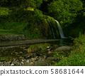 White silver park 58681644