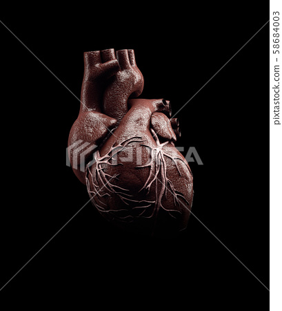 3d Illustration of Anatomy of Human Heart Isolated on black 58684003