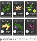 Big set of various spices and herbs, seasonings 58702135