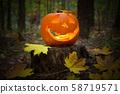 Halloween pumpkin glowing in the dark forest 58719571