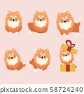 Cartoon character pomeranian dog poses on pastel 58724240