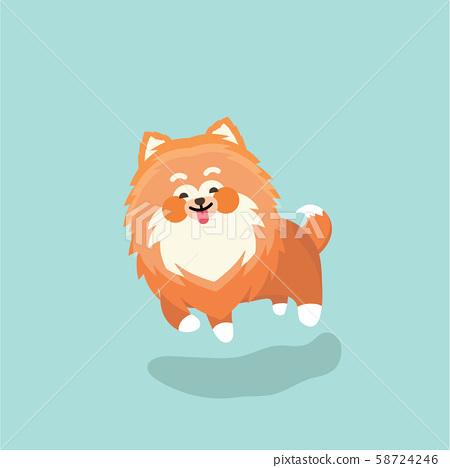 Cute Pomeranian spitz. Flat vector illustration 58724246