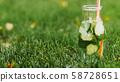 healthy diet oganic detox drink fesh water grass 58728651