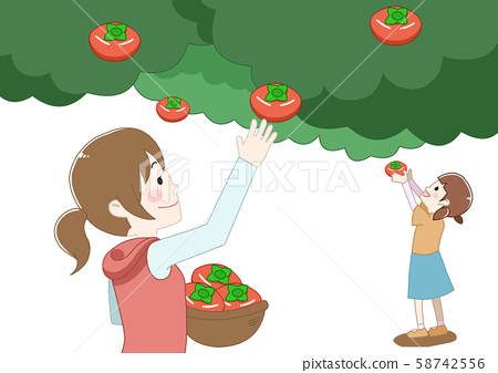 Two people picking fruits 58742556