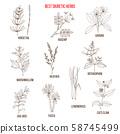 Best diuretic herbs set 58745499
