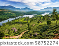 Hills and tee plantations in Kerala 58752274