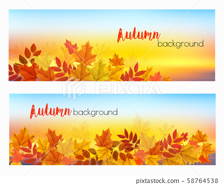 Two abstract autumn banners with colorful leaves 58764538