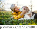 Front view of senior woman lying on grass in spring, kissing pet dog. 58766003