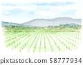 Rural scenery, paddy watercolor 58777934