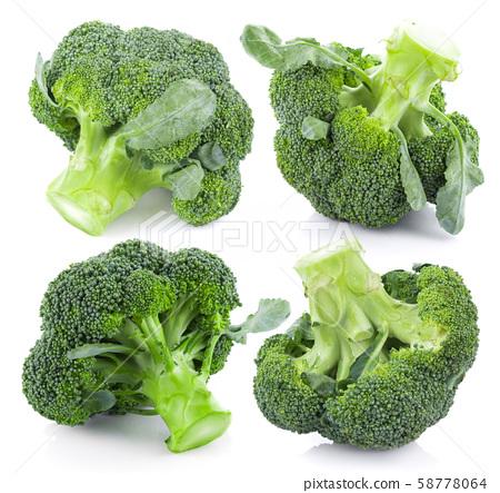 Broccoli isolated on white background 58778064